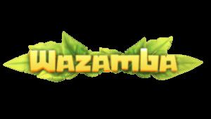 wazamba casino rapid transfer norge